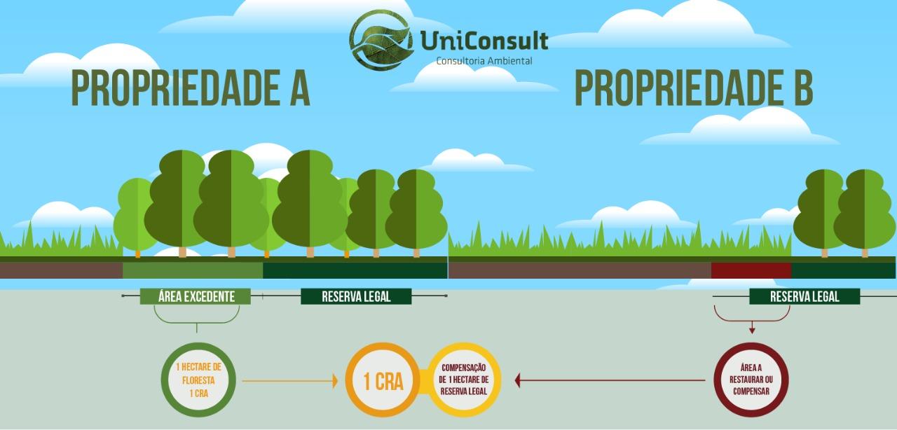 As cotas foram instituídas pelo Código Florestal e permitem aos proprietários de imóveis rurais negociar ativos florestais
